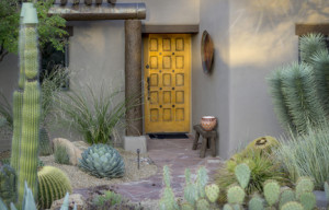 Xeriscape Landscaping in Sonoma County DK Landscaping