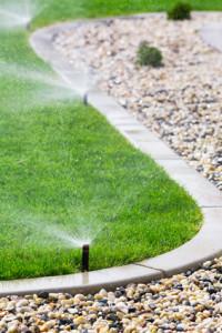 Sprinkler System Design That Saves You Money DK Landscaping Santa Rosa CA