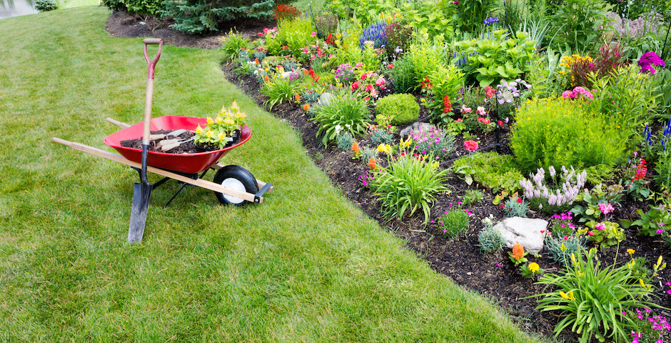 Gardening Advice From A Landscape Maintenance Company Dk Landscaping