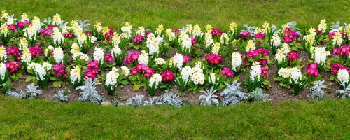 Flower-Bed-Ideas-A-Few-Good-Tips-You-Should-Follow-DK-Landscaping-CA