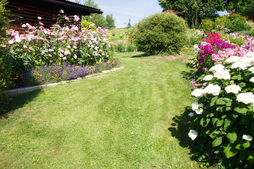 Landscaping Guide How To Create A Beautiful And Functional Garden