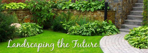 Diy Vs Hiring A Professional Landscaper